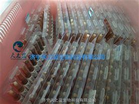 芦丁HPLC98以上标准品/标准物质g级kg级