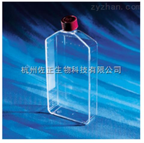 fisher 细胞培养瓶 3013000