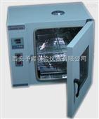 真空干燥箱DZF6010特价供应