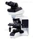BX43-奥林巴斯正置研究级显微镜热销型号