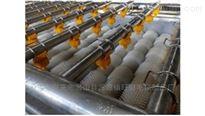 MQJ-Ⅰ型毛刷土豆去皮机