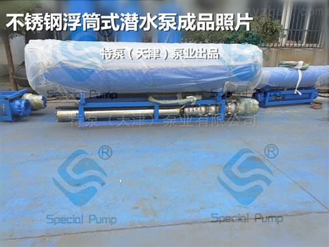水库取水大流量浮筒式潜水泵