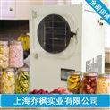 QFN-YW-原位冷冻干燥机