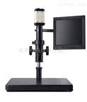 电子视频放大显微镜