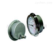 YTN-100HZ全不銹鋼壓力表耐震外卡焊殼式