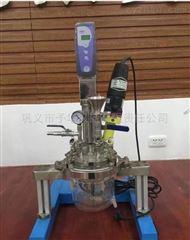 Reactor-5L予华仪器 均质乳化系统反应器Reactor-5L