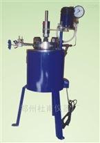 小型磁力搅拌器新型水热反应釜