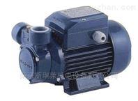意大利佩德罗水泵_-PV65,pv60