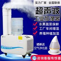 大功率超声波工业加湿器蔬菜水果保鲜增湿机