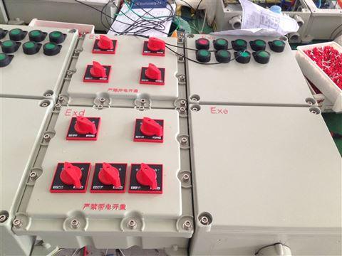 BDX51-2/100D防爆动力配电箱(动力检修)