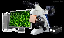 BK-FL-BK-FL正置荧光显微镜