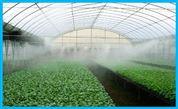 温室大棚加湿器 花卉种植加湿设备