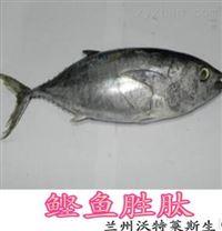 動物提取物  鰹魚勝肽98    長期供應
