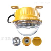 防眩15WLED防爆灯 10WLED防爆节能灯