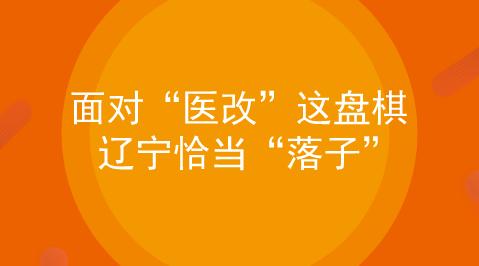 """面对""""医改""""这盘棋 辽宁恰当""""落子"""""""