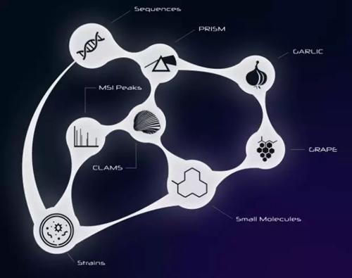 1.62亿美元!人工智能开发新药公司与辉瑞达成合作